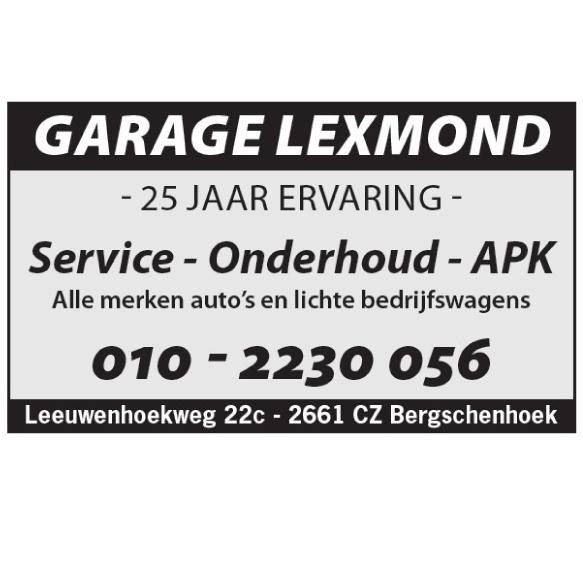 Garage Lexmond Bergschenhoek| Service | Onderhoud | APK | 010 – 2230 056