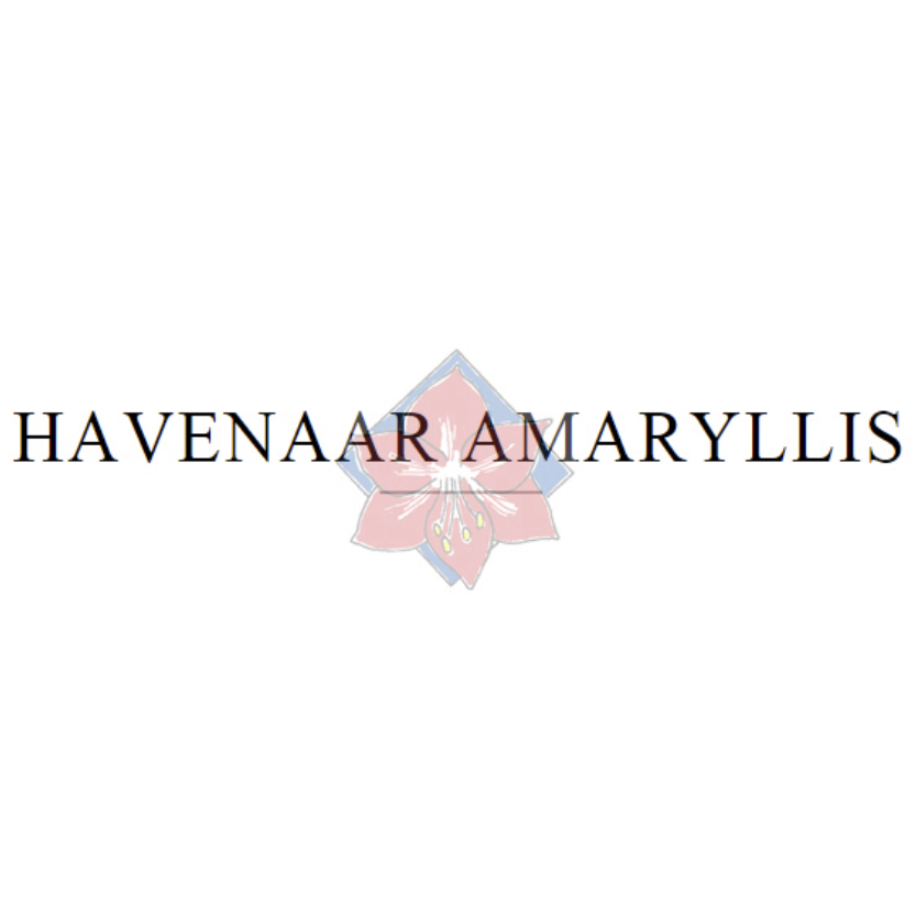 Havenaar | Amaryllis kwekerij