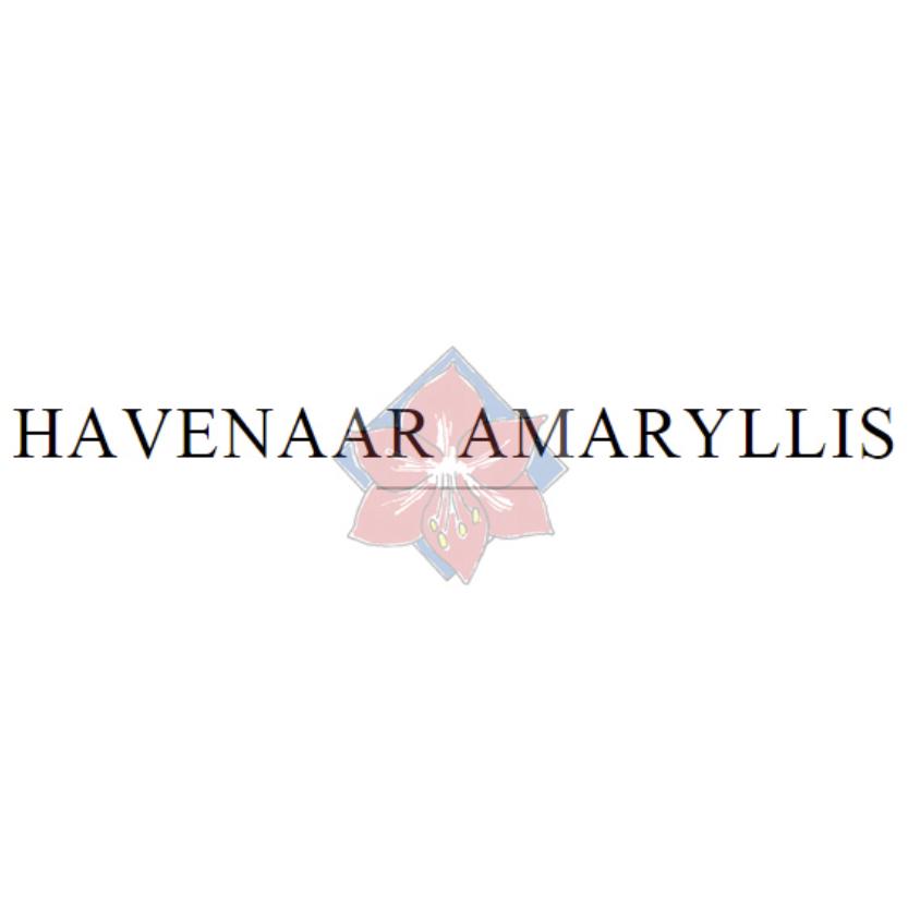 Havenaar | Amaryllis kwekerij